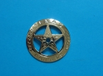 Hvězda Texas rangers